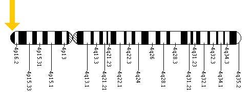 Ahsmediacenter The Huntington S Disease Gene Htt 2